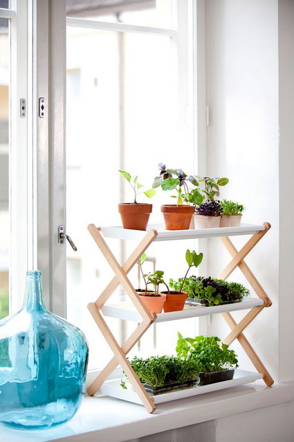 Ideas para decorar interiores con plantas