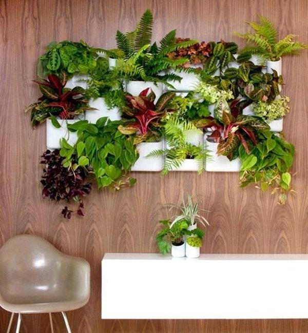 Jardín vertical en el interior del hogar