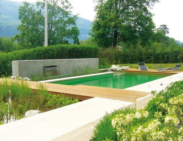 Ecological pools with plants
