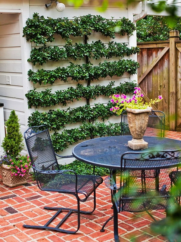 Ideas para decorar patios con poco dinero. Decoracion Low ... on Low Cost Patio Ideas id=41632