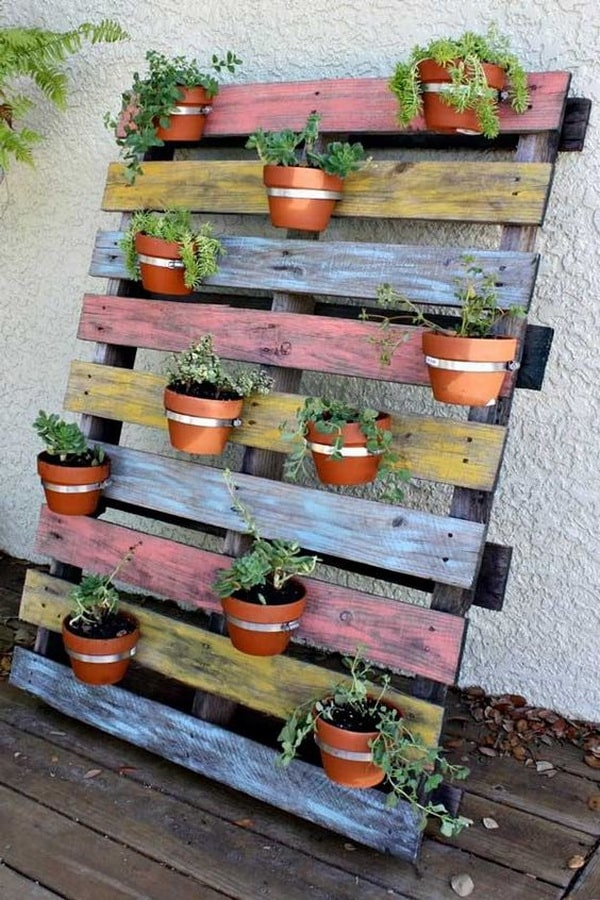 Vertical gardens made with pallets
